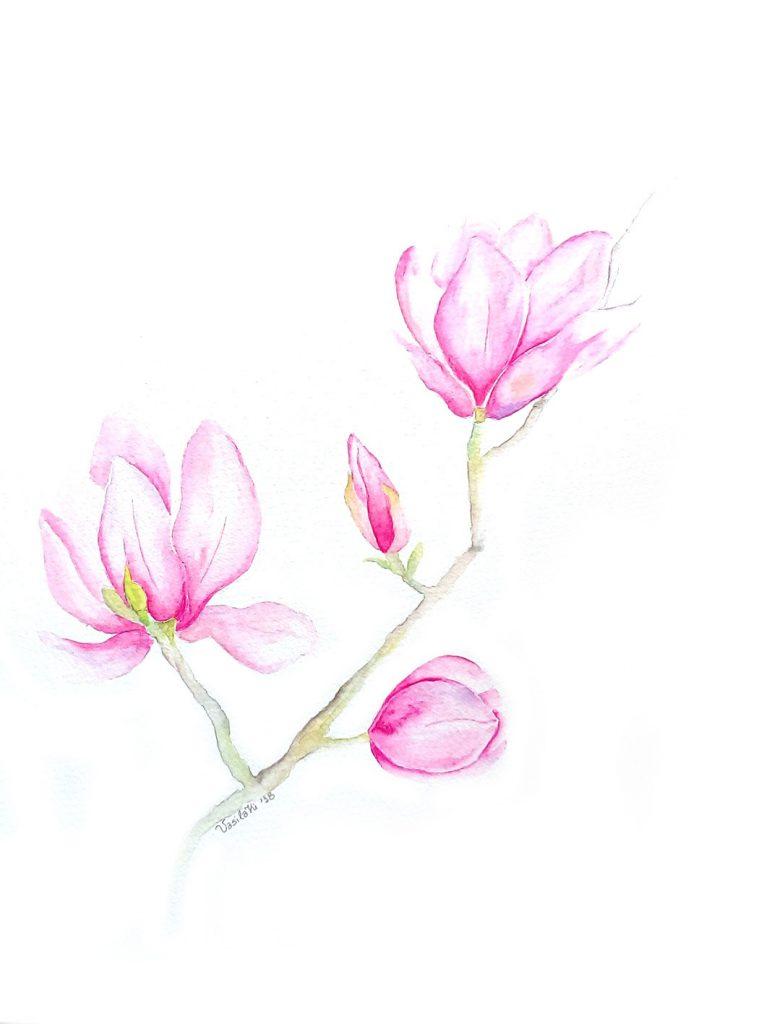 30x40_magnolia blossom